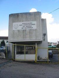 aara_edificio21